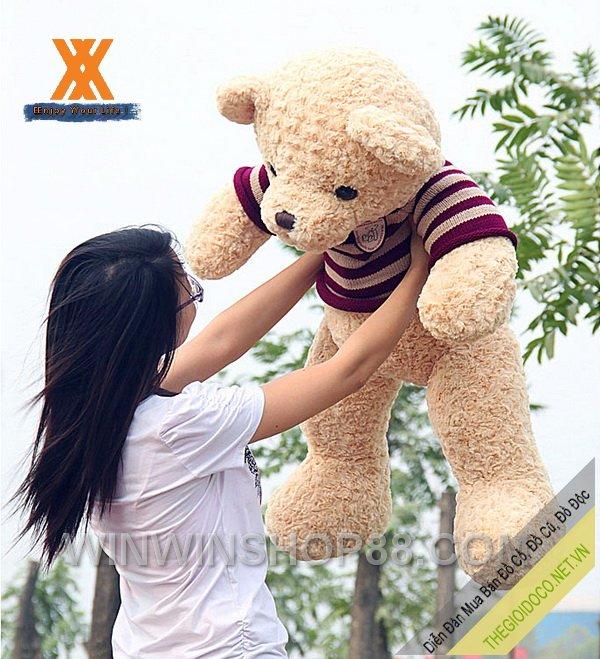 Gấu-bông-Teddy-Ver.02-TNB80-01.jpg