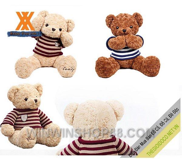 Gấu-bông-Teddy-Ver.02-TNB80-043.jpg