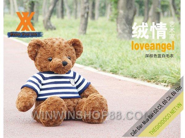 Gấu-bông-Teddy-Ver.02-TNB80-050.jpg