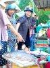 Thừa Thiên Huế - Hàng chục ngư dân vây bắt đàn cá trị giá gần 4 tỉ đồng