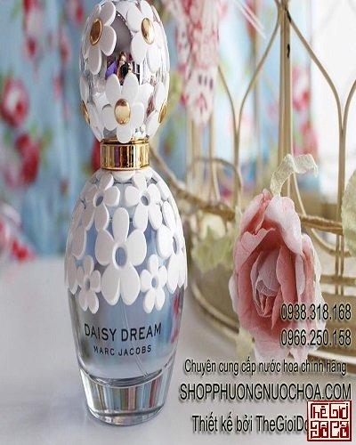 Daisy-Dream-main.jpg