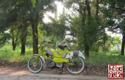 xe-tgdc (1).jpg